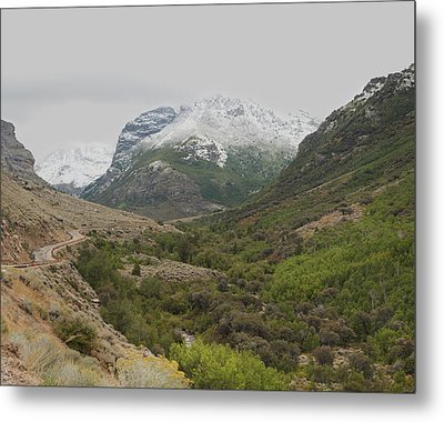 Metal Print featuring the photograph Lamoille Canyon by Daniel Hebard