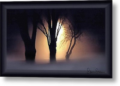 Lamplit Silhouetted Trees In Fog - Signed Limited Edition Metal Print