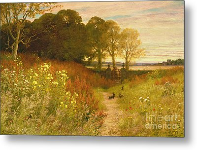 Landscape With Wild Flowers And Rabbits Metal Print