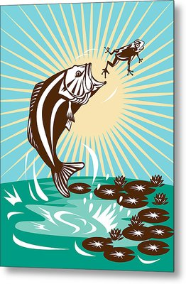 Largemouth Bass Jumping Catching Frog  Metal Print by Aloysius Patrimonio