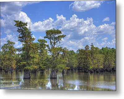 Largemouth Country Metal Print