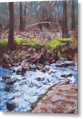 Laughing Stream In Winter Metal Print by Carol Strickland