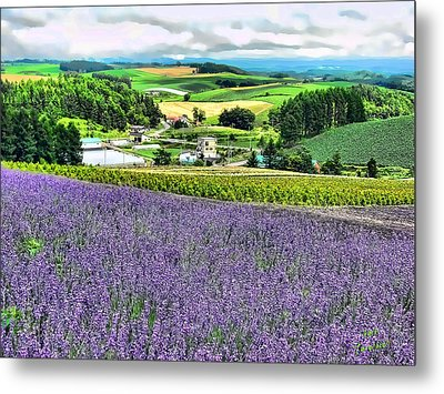 Metal Print featuring the photograph Lavender Fields by Kathy Tarochione