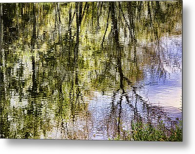Metal Print featuring the photograph Lazy Day by John Hansen