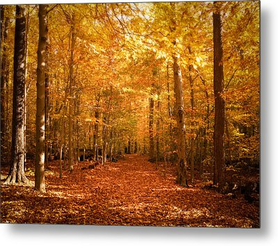 Leaf Covered Pathway In A Golden Forest Metal Print by Chantal PhotoPix