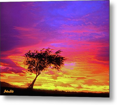 Leaning Tree At Sunset Metal Print