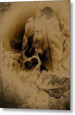 Leaves In Sepia Metal Print