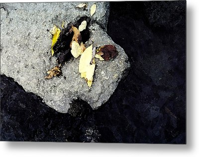 Metal Print featuring the photograph Leaves On The Rocks by Lyle Crump