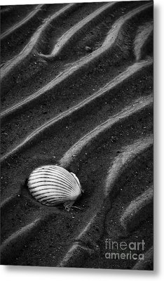 Metal Print featuring the photograph Left Behind by Carrie Cranwill