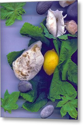 Lemon Stone And Shells With Leaves  Metal Print by Leonor Shuber
