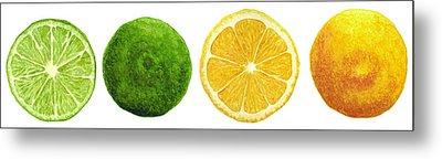 Lemons And Limes Metal Print by Kathleen Skinner