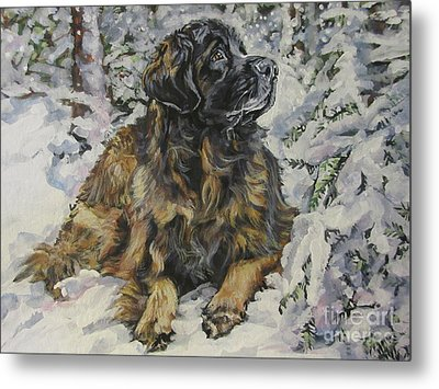 Leonberger In The Snow Metal Print