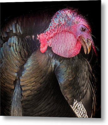 Let Us Give Thanks Metal Print by Karen Wiles