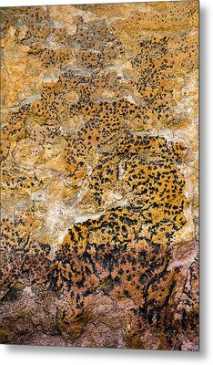 Metal Print featuring the photograph Lichen Abstract, Bhimbetka, 2016 by Hitendra SINKAR