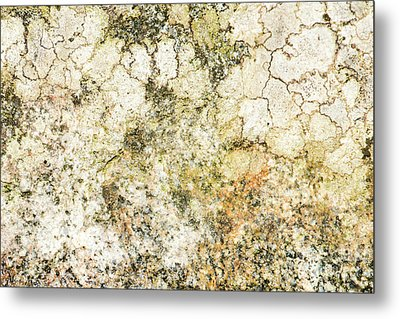 Metal Print featuring the photograph Lichen On A Stone, Background by Torbjorn Swenelius