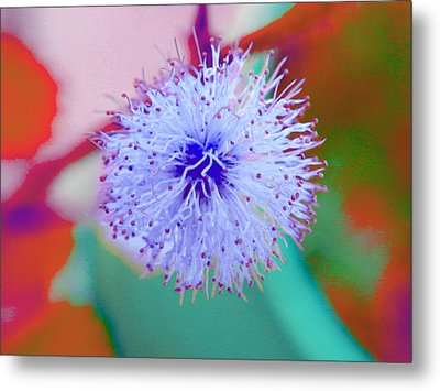 Light Blue Puff Explosion Metal Print