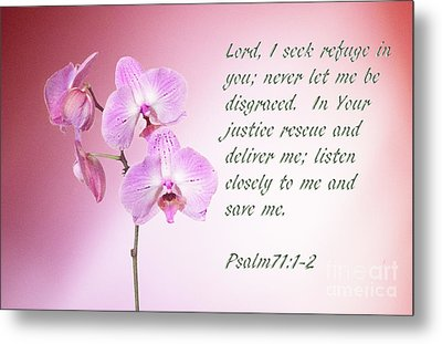 Metal Print featuring the photograph Light Pink Orchid Psalms 71 by Linda Phelps
