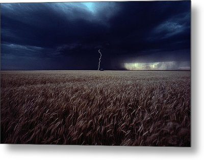 Lightning Flashes Above A Kansas Wheat Metal Print by Cotton Coulson