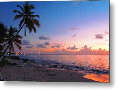 Lights At Sunset Metal Print by Robin Becker