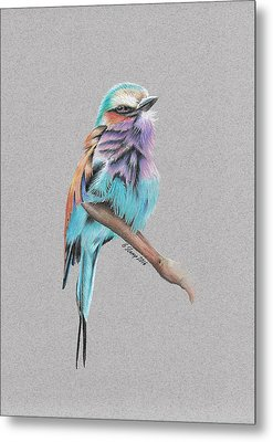 Lilac Breasted Roller Metal Print by Gary Stamp