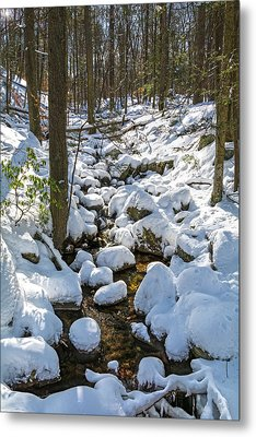 Lily Pads Of Snow Metal Print by Angelo Marcialis