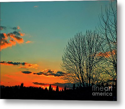 Linvilla Sunset Metal Print