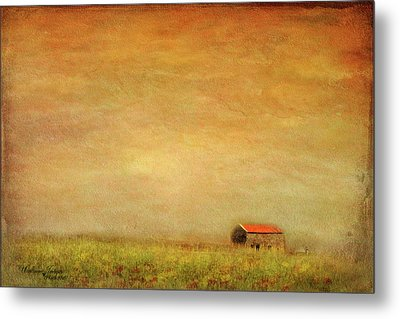 Metal Print featuring the photograph Little Barn On The Hill by Wallaroo Images