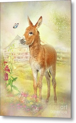 Little Donkey Metal Print