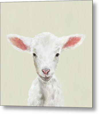 Little Lamb Metal Print