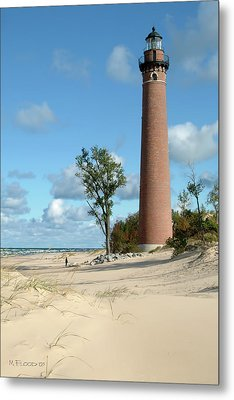 Little Point Sable Light Metal Print by Michael Flood