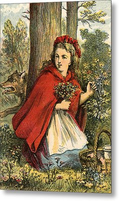 Little Red Riding Hood Gathering Flowers Metal Print by English School