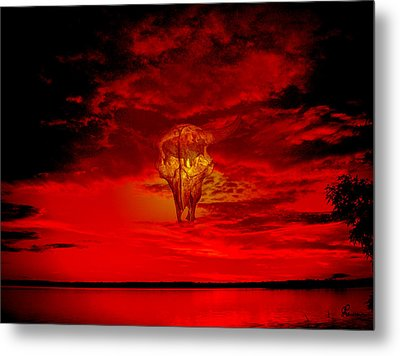 Living Sky Metal Print by Andrea Lawrence
