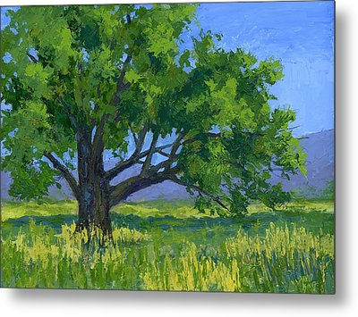 Lone Tree Metal Print by David King