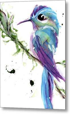 Metal Print featuring the painting Long-tailed Sylph by Dawn Derman