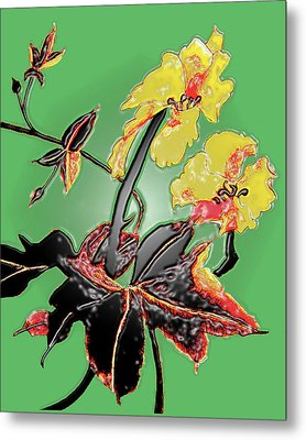 Loofah Gourd Flower - Three Dimensional Metal Print by Merton Allen