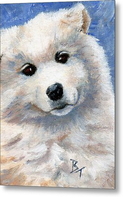 Look At That Face Metal Print by Brenda Thour