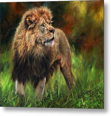 Metal Print featuring the painting Look Of The Lion by David Stribbling