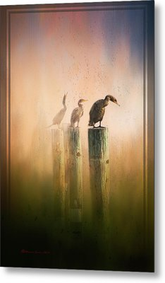 Looking Into The Mist Metal Print