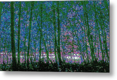 Metal Print featuring the photograph Looking Through The Trees by Lyle Crump