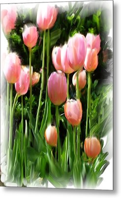 Metal Print featuring the photograph Looking Up by Susan Fisher