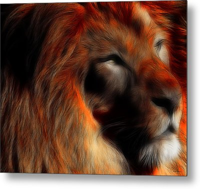 Lord Of The Jungle Metal Print by Wingsdomain Art and Photography