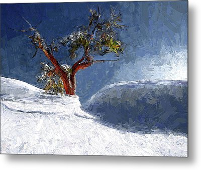 Lost In The Snow Metal Print