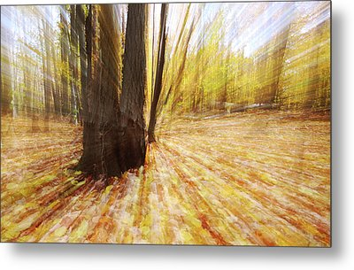 Lost In Time Metal Print by Mircea Costina Photography
