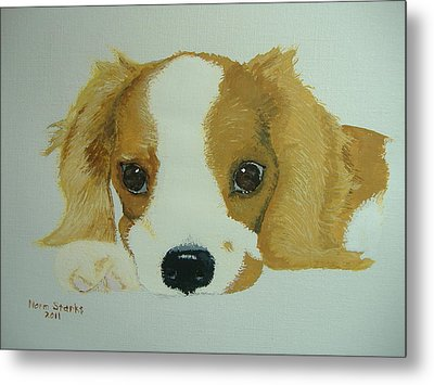 Metal Print featuring the painting Lovable Puppy by Norm Starks