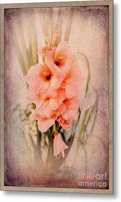 Lovely Gladiolus Metal Print