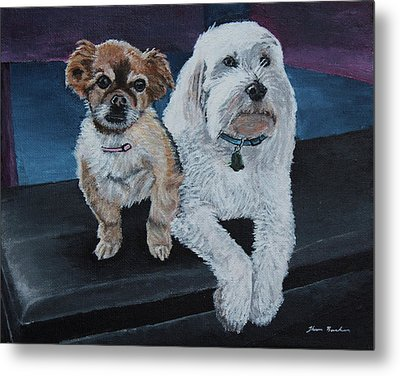 Lucy And Colby Metal Print