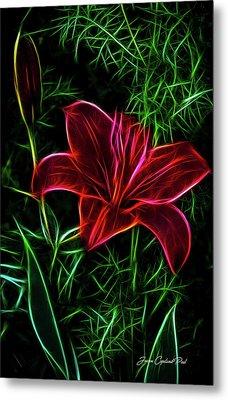 Luminous Lily Metal Print