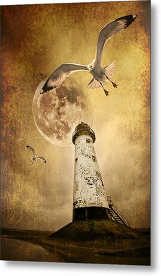 Lunar Flight Metal Print by Meirion Matthias