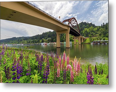 Lupine In Bloom By Sauvie Island Bridge Metal Print by David Gn