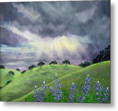 Lupines After A Spring Storm Metal Print